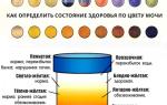 Меняется ли цвет мочи при беременности?