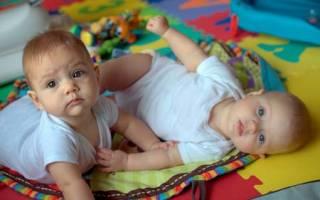 Многоплодная беременность: развитие плода по неделям